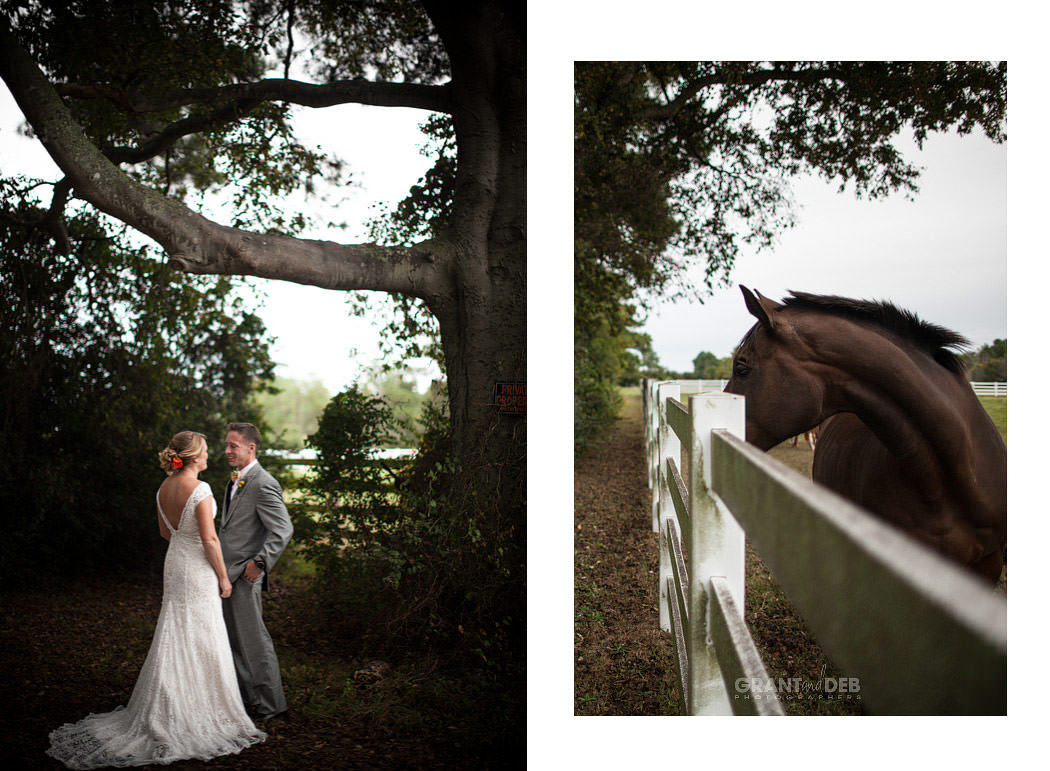 fairwinds farm wedding photography - fairwinds farm wedding photography