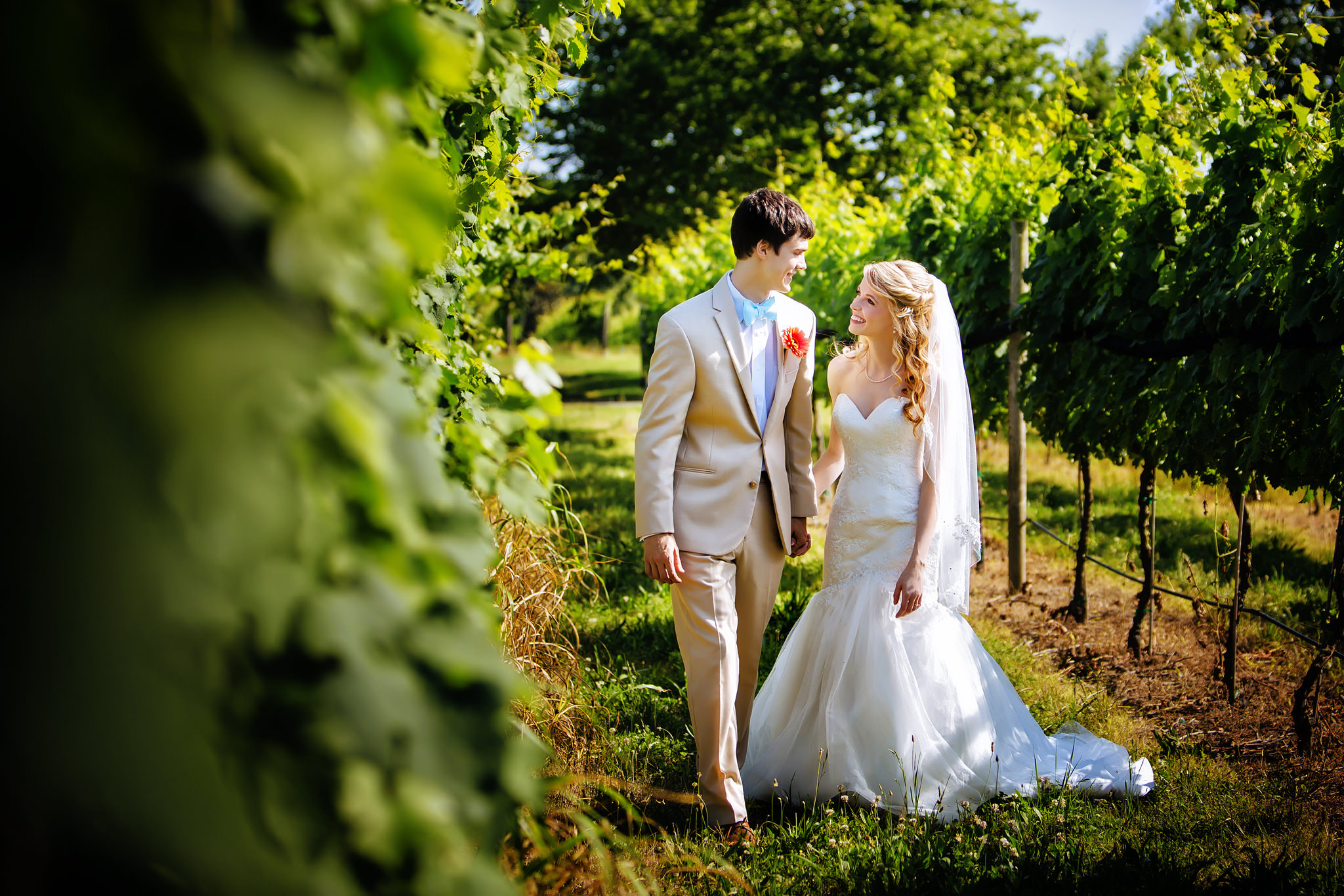 williamsburg winery wedding photographers & charlottesville wedding Photography wedding gallery